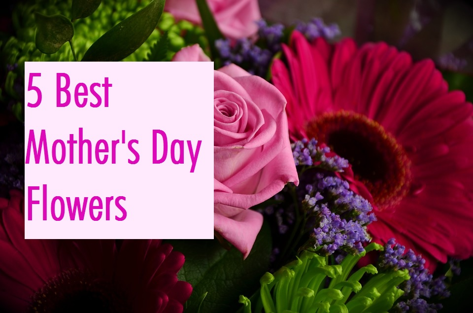 5 Best Flowers For Mother S Day Send Flowers Worldwide